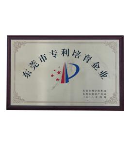 Dongguan patent cultivation enterprise